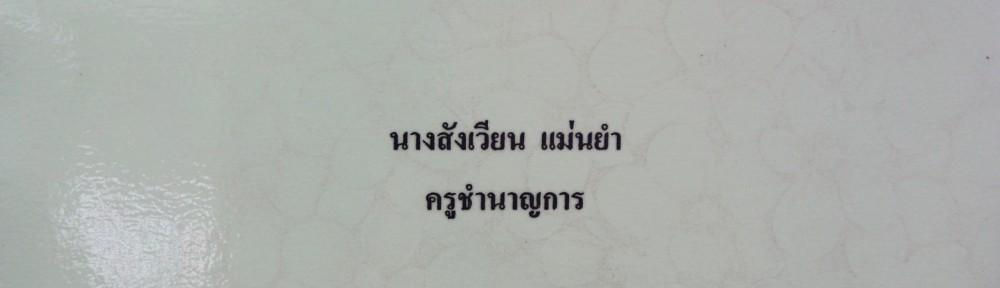 ป 22.1